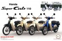 1/12 Honda Super Cub 110 Green