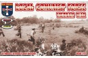1/72 Local Communist Force Vietnam war