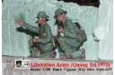 1/35 Liberation army (Quang Tri 1972)