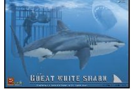 1/18 (1/16) Great white shark with diver