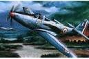 1/48 P-63C