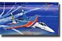 1/48 Su-27 Russian Knight w/correct nose + VN