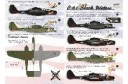 1/48 P-61 Black widow decal