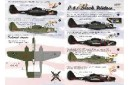 1/48 P-61 Black widow decal
